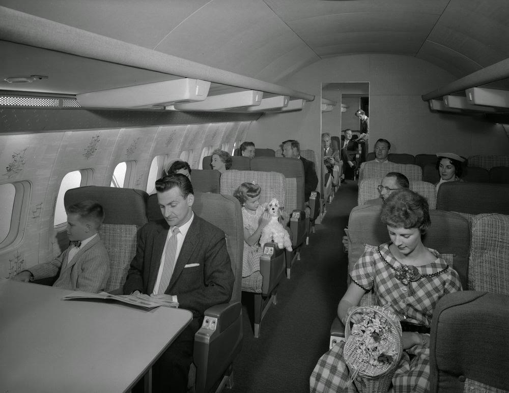 golden-age-air-travel-puppy