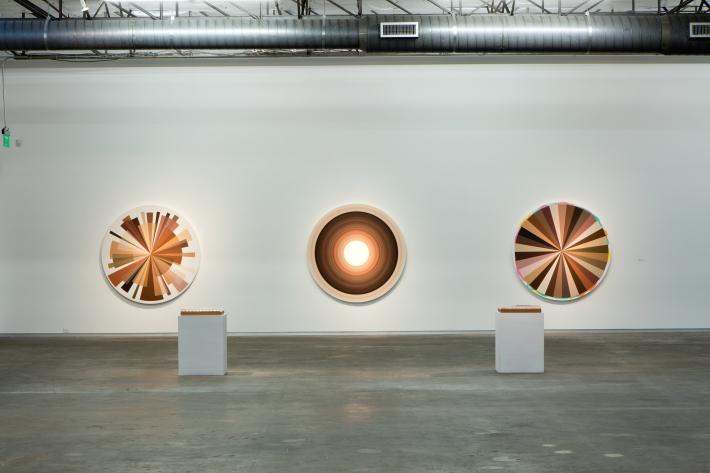 Adriana Varejao Big Polvo Color Wheels 2015 Dallas contemporary review