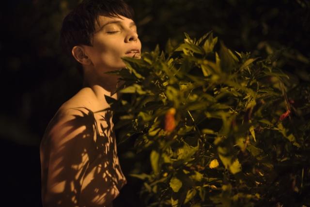 Nicolle - Maira Morais-08
