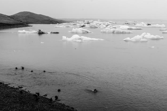 iceland-1-96